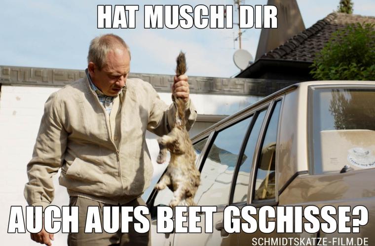 Hat Muschi Dir auch aufs Beet gschisse? - Kinofilm Schmidts Katze